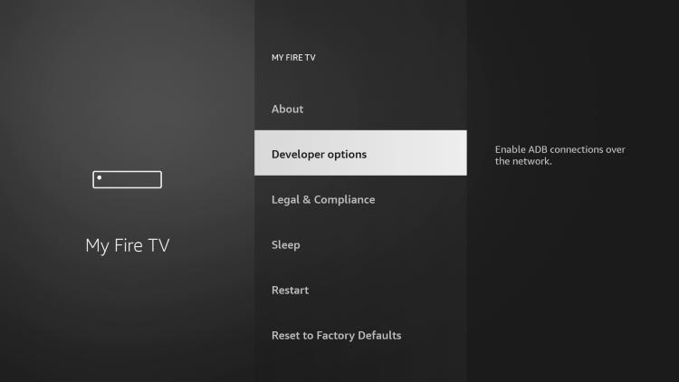 Click Developer options.