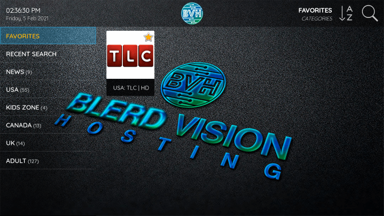 One of the best features within the Blerd Vision IPTV service is the ability to add channels to Favorites.