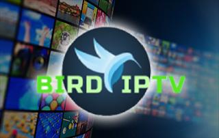 bird iptv