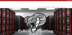 cobra iptv website