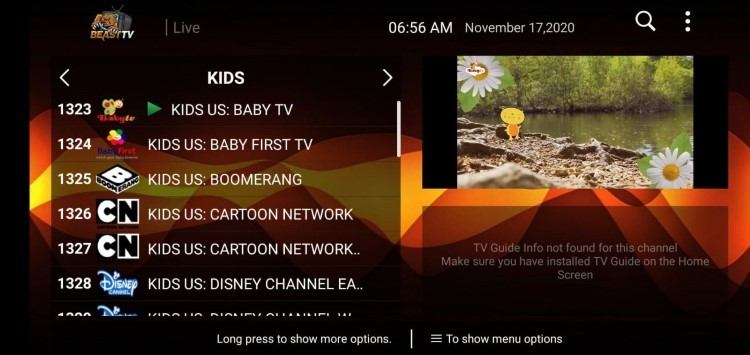 beast iptv channels